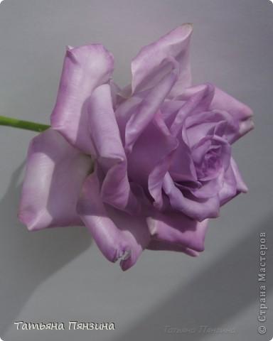 Давно хотела розу такого цвета, а тут еще и новую глину приобрела. Вот что у меня получилось. . Выполнена роза из полимерной тайской глины Flower Clay, по составу близкой к холодному фарфору. Очень приятная в работе.  фото 1