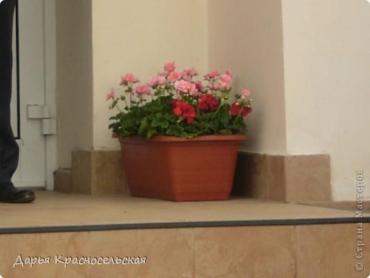 Красавица Весна фото 6