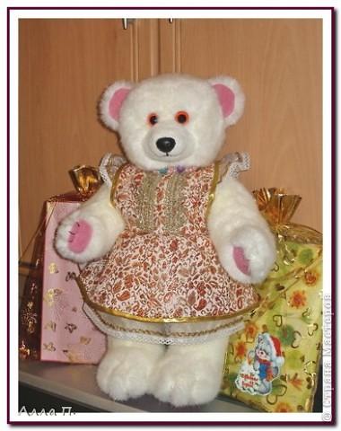 Медведи фото 7