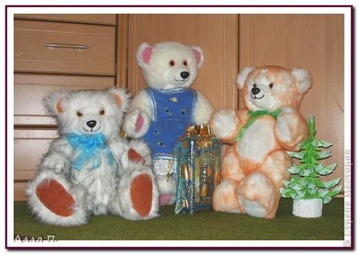 Медведи фото 3