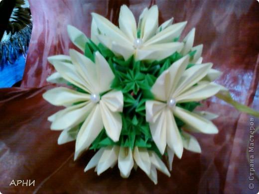 Лилии на Электре фото 5