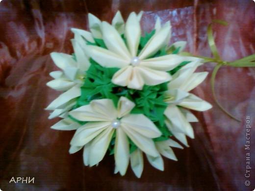 Лилии на Электре фото 3