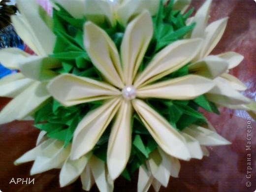Лилии на Электре фото 4