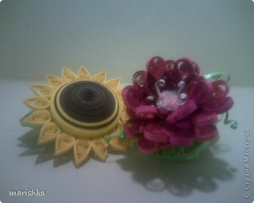 Цветочная парочка. фото 1