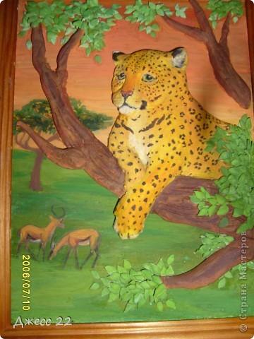 Леопард. фото 1