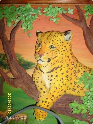 Леопард. фото 3