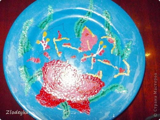 Моя тарелочка. фото 7