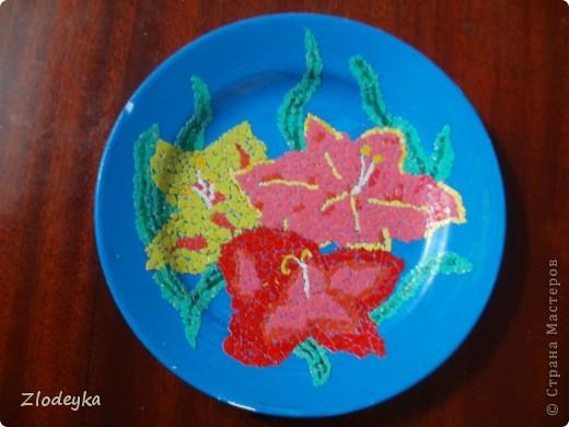Моя тарелочка. фото 8