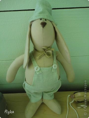 Заяц))) фото 1