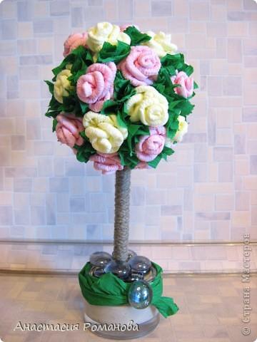 Наконец-то я вырастила розовое дерево! Розочки были накручены еще месяца 1,5 назад, да вот все руки не доходили.... фото 1