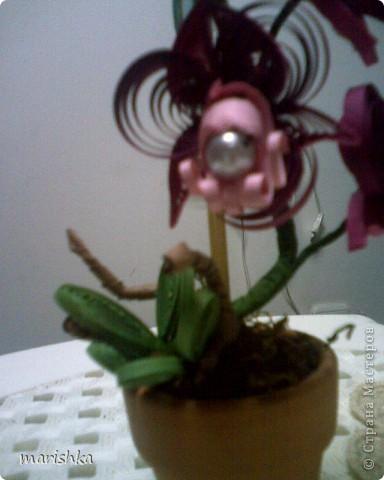 Доброго времени суток всем,кто заглянул ко мне в гости. Я понимаю,что не первая,кто пытается создать орхидеи.Эту миниатюрку делала на пробу. Очень хотелось сделать цветочек в горшке. фото 2
