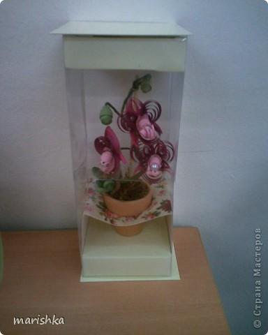 Доброго времени суток всем,кто заглянул ко мне в гости. Я понимаю,что не первая,кто пытается создать орхидеи.Эту миниатюрку делала на пробу. Очень хотелось сделать цветочек в горшке. фото 5