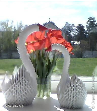 Лебеди в цветах