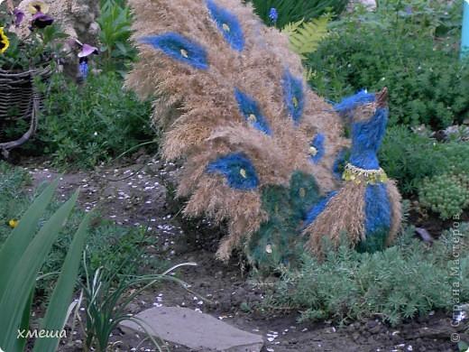 Сказочная птица фото 2
