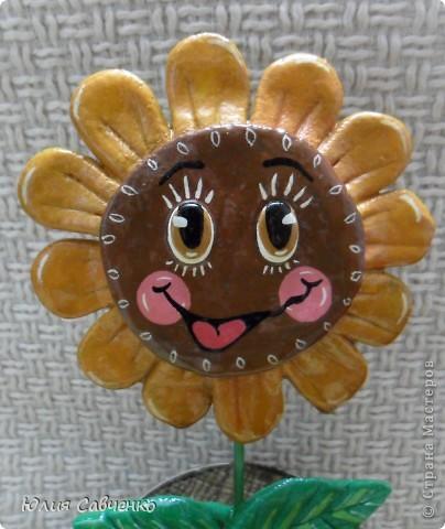Привет!Очень рада всем!Вот такие цветочки сделала для сыночка в его комнату,будут стоять у него на окошке. фото 10