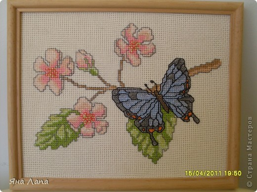 Вот такая бабочка. фото 2