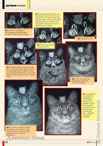 Вышел журнал, в котором напечатан мой первый печатный мастер-класс по созданию картины из тополиного пуха. За приглашение большое спасибо Леночке Смирновой utichka фото 7