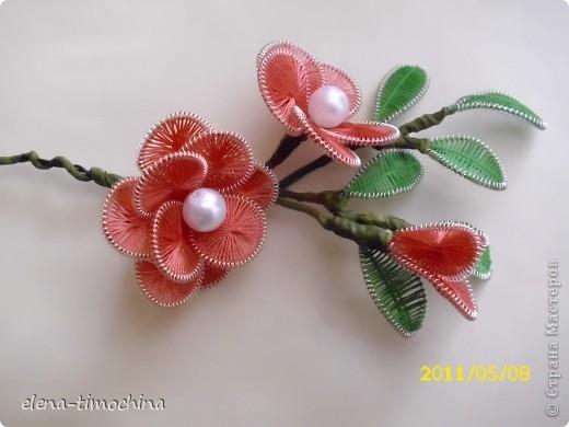Весна. Веточка с цветами. фото 1