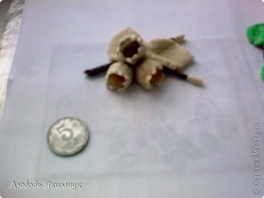 Анютины глазки и лесной орех. фото 4