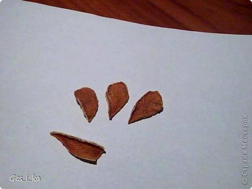 наконец-то купила апельсин, а он оказался толстокорый, поэтому покажу как сделать спиральную розу и ромашку (а также некоторые другие детальки) из апельсиновой корки фото 10