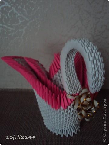 Лебедушка фото 4