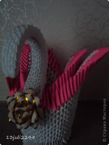 Лебедушка фото 5