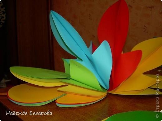 Цветок в развернутом и свернутом виде. фото 10