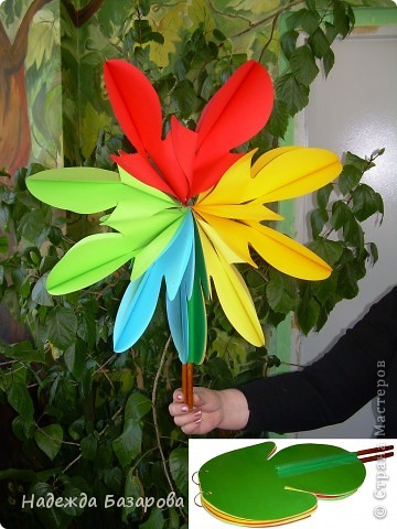 Цветок в развернутом и свернутом виде. фото 1