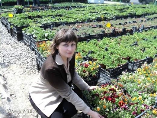 Гуляли, гуляли... И догулялись до цветочного рынка! Заранее предупреждаю вопросы о том где какой цветок, я в них не разбираюсь, просто любуюсь. Но, насколько я могла узнать у мамы, все цветы представленные на этих фото общеизвестны. так что просто приятного Вам просмотра!  фото 1
