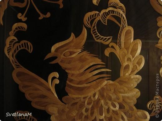 Птица фото 3