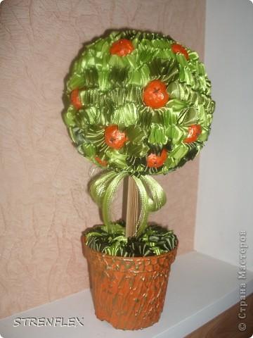 Моя свекровь, будучи у меня в гостях, увидела мое первое атласно-апельсиновое дерево http://stranamasterov.ru/node/164804 - захотела себе такое же на день рождения!!! Вот оно и получилось! Сделала я его еще к 7 апреля, а вот только выставила... фото 1