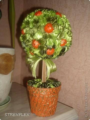 Моя свекровь, будучи у меня в гостях, увидела мое первое атласно-апельсиновое дерево http://stranamasterov.ru/node/164804 - захотела себе такое же на день рождения!!! Вот оно и получилось! Сделала я его еще к 7 апреля, а вот только выставила... фото 8