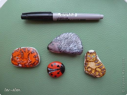 Давно хотелось попробовать нарисовать на камешках. Дома оказались только небольшие подходящей формы. Хочется конечно размер побольше, но это при случае, как только попадутся камни нужной формы.  фото 1