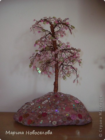 Деревья фото 3
