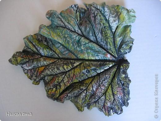 На даче вырос ревень вот с такими листочками, давно хотела попробовать сделать гипсовые отливки. Листочки примерно 20 см в длину. фото 3