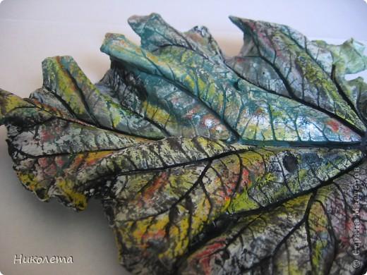На даче вырос ревень вот с такими листочками, давно хотела попробовать сделать гипсовые отливки. Листочки примерно 20 см в длину. фото 2