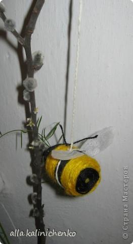 первые пчелки фото 1