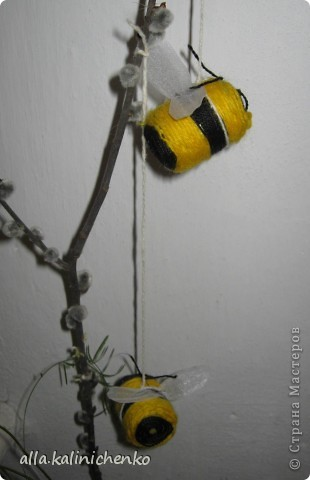 первые пчелки фото 2
