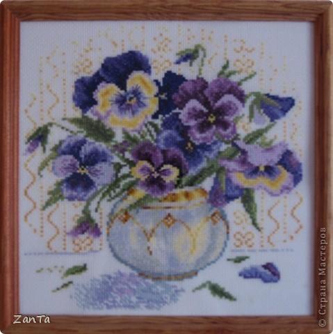 Голубая, лиловая, синяя, белая Расцвела нынче в мае сирень.  Я хожу и любуюсь, как ошалелая На цветущие кисти весь день.... фото 2