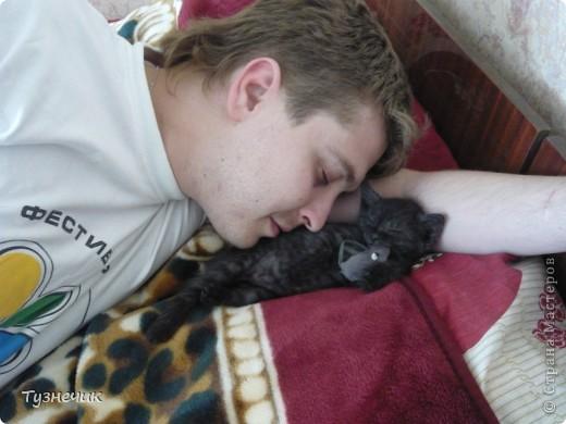 Устал после охоты на Мышильду, так с ней и заснул)))) фото 2