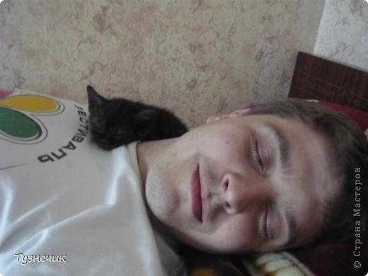 Устал после охоты на Мышильду, так с ней и заснул)))) фото 3