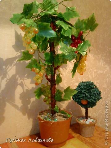 Очень захотелось сделать виноградные деревья и не знала из чего,купила магнитики виноградинки и искусственные листья фото 2