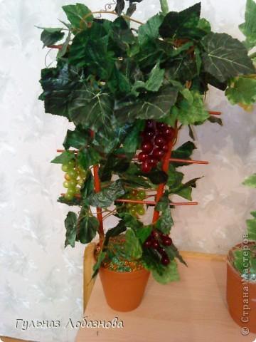 Очень захотелось сделать виноградные деревья и не знала из чего,купила магнитики виноградинки и искусственные листья фото 3
