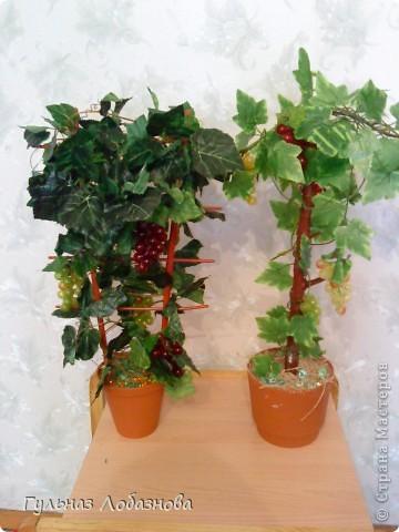 Очень захотелось сделать виноградные деревья и не знала из чего,купила магнитики виноградинки и искусственные листья фото 1