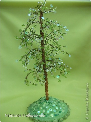 Деревья фото 14