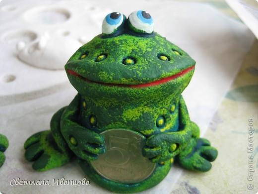 Лягушки фото 14