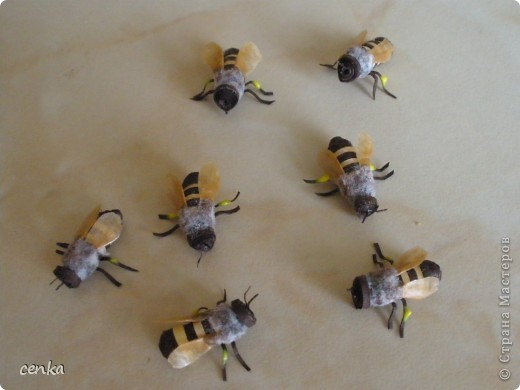 Моите нови пчелички