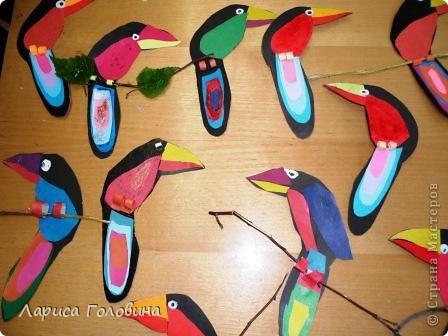 Такие птицы поселились во 2 классе. фото 2