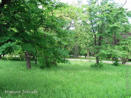 Хочу пригласить Вас посетить Таирово весной . У нас здесь очень красиво ! Большие парки , свежий воздух , и как красиво поют птицы ! фото 4
