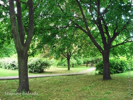 Хочу пригласить Вас посетить Таирово весной . У нас здесь очень красиво ! Большие парки , свежий воздух , и как красиво поют птицы ! фото 6